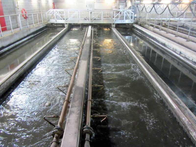 bioplastic-water