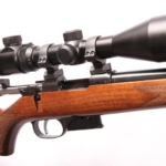 telescope-rifle