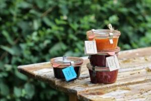 made-in-pohori-marmelade