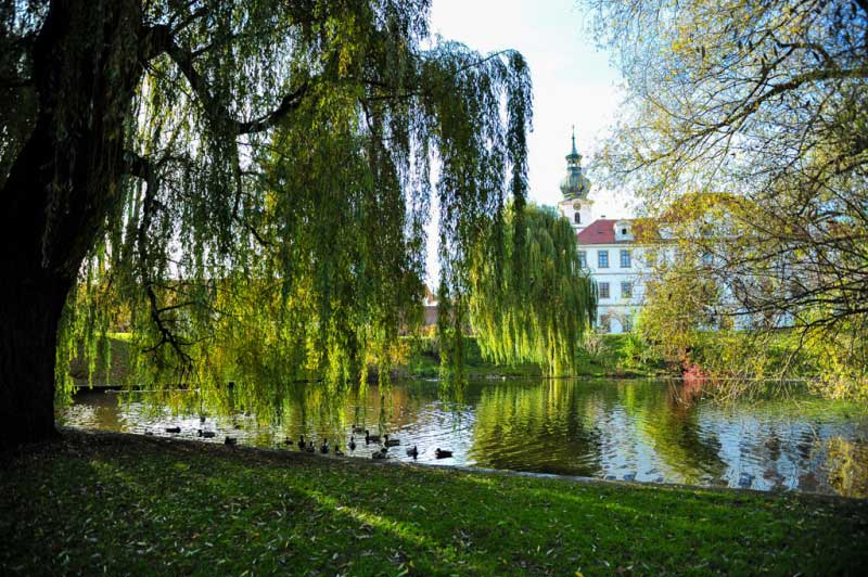 parks-brevnov