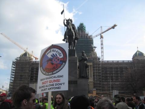 pro-gun protest