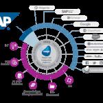 SAP training videos