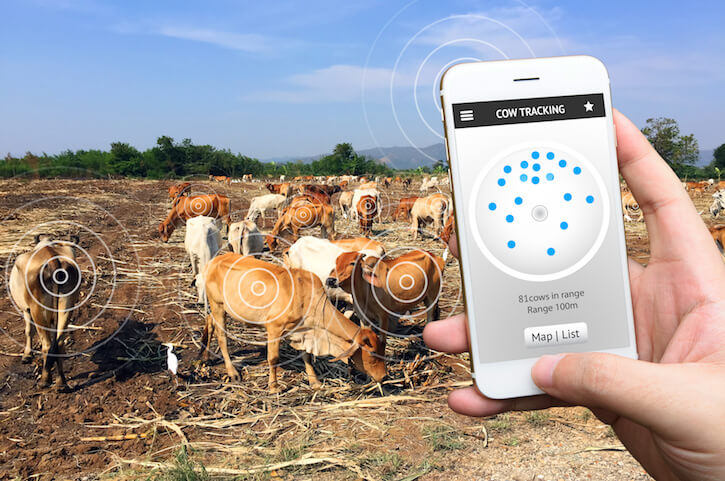 cow tracking app