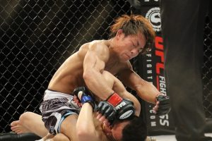 mma mixed martial arts ufc