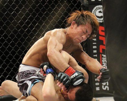 mma mixed martial arts ufc