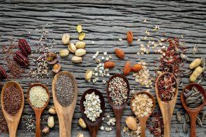 Alternative Meat Protein